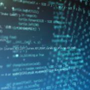 prigram_code
